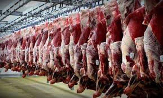 فراوری سالانه 64 هزار تن گوشت قرمز در کرمانشاه