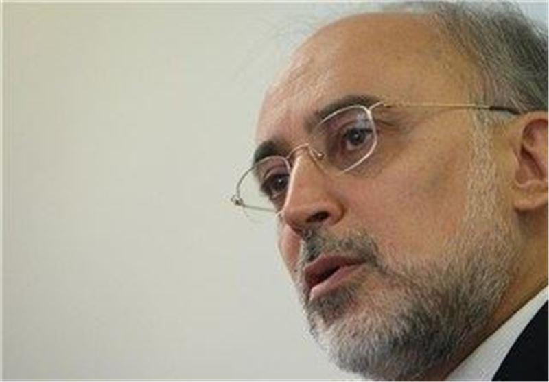 صالحی: پیش بینی لازم برای برهم خوردن برجام را نموده ایم، 11 تن آب سنگین به عمان فرستاده شده