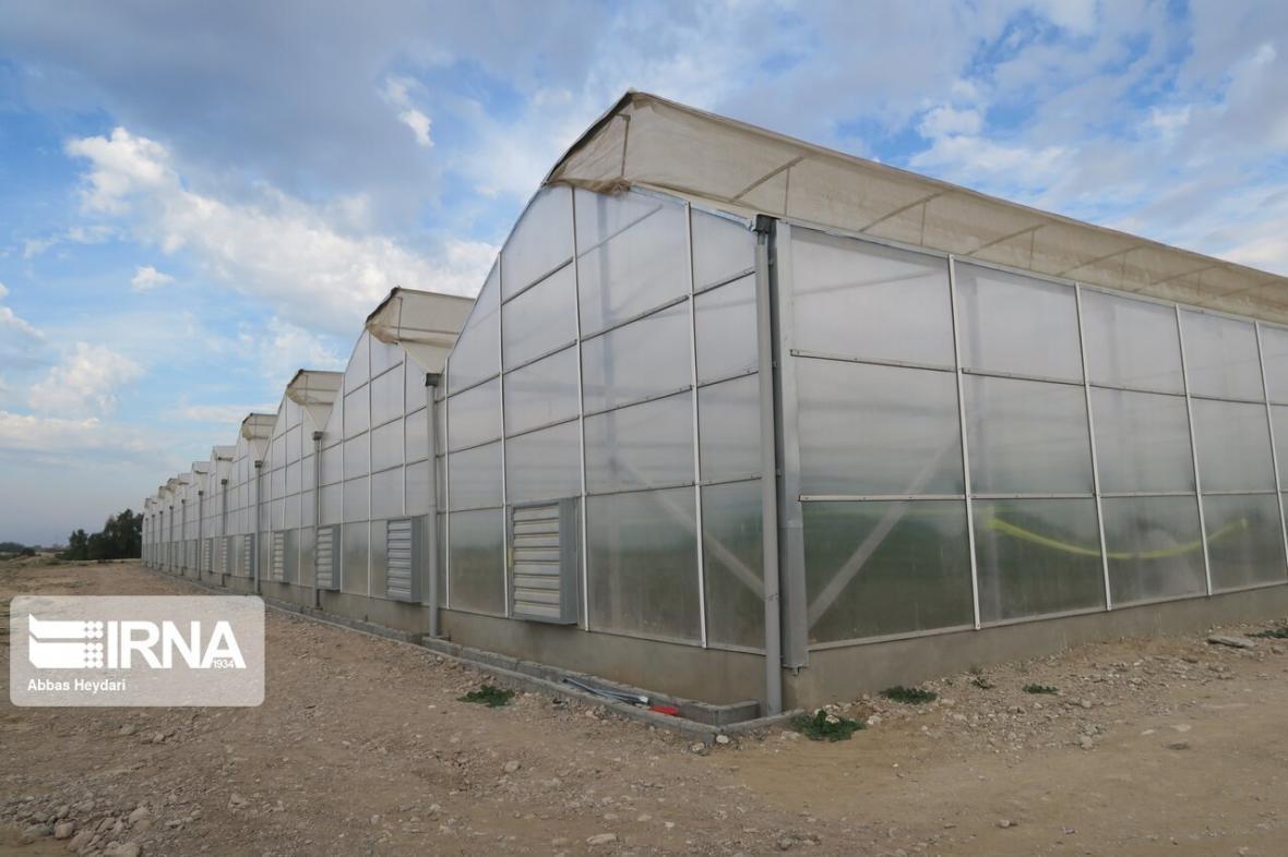 خبرنگاران بیش از 800 میلیارد ریال طرح کشاورزی در جنوب کرمان افتتاح می گردد