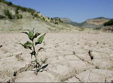 خشک ترین سال نیم قرن اخیر را تجربه می کنیم